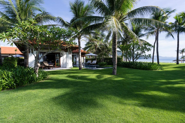 Cỏ paspalum cho resort Cam Ranh